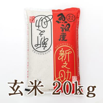 中魚沼産 新之助 玄米20kg