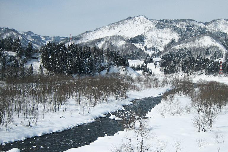 豊かな自然と清らかな雪解け水に育まれています