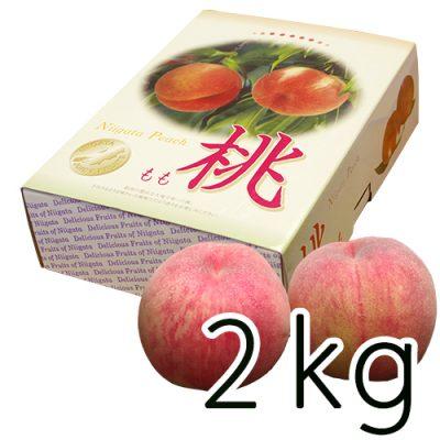 新潟産 岩福農園の完熟桃 2kg