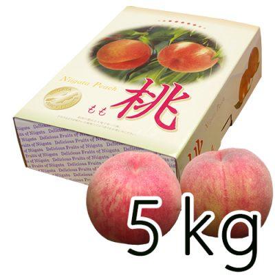 新潟産 岩福農園の完熟桃 5kg