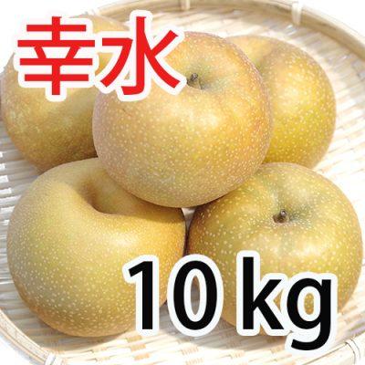 幸水 10kg (18~24玉入)