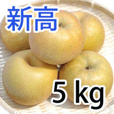 新高 5kg (5~9玉入)