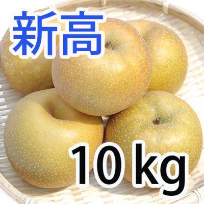 新高 10kg (10~18玉入)