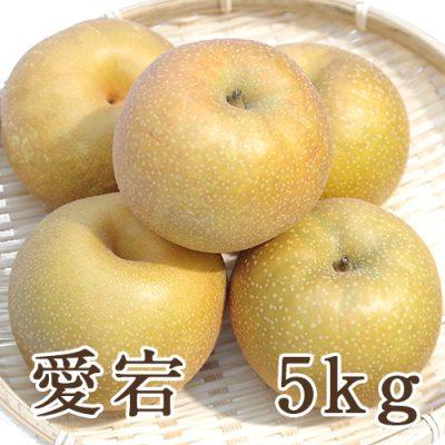 愛宕 5kg (5~8玉入)