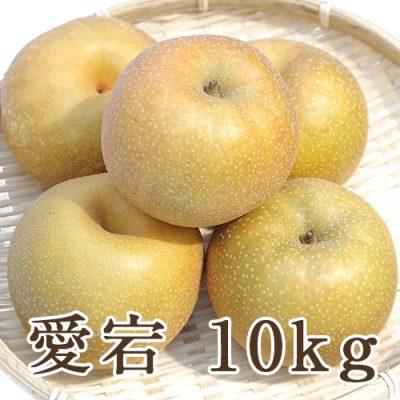 愛宕 10kg (10~16玉入)