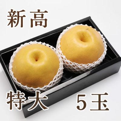 新高 特大玉 6㎏(5玉入)