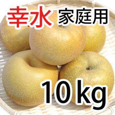 家庭用 幸水 10kg (18~28玉入)