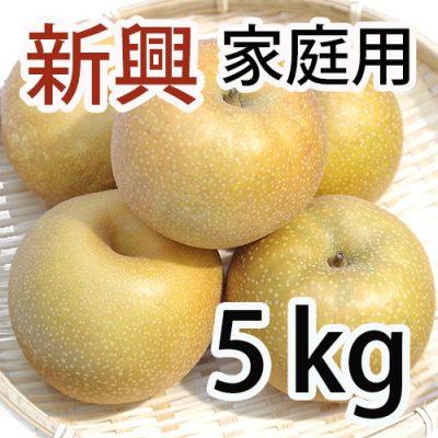 家庭用 新興 5kg (6~10玉入)