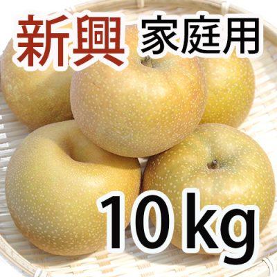 家庭用 新興 10kg (12~20玉入)