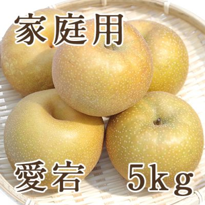 家庭用 愛宕 5kg (5~8玉入)