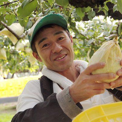 三条市でル・レクチェを栽培する「岩福農園」
