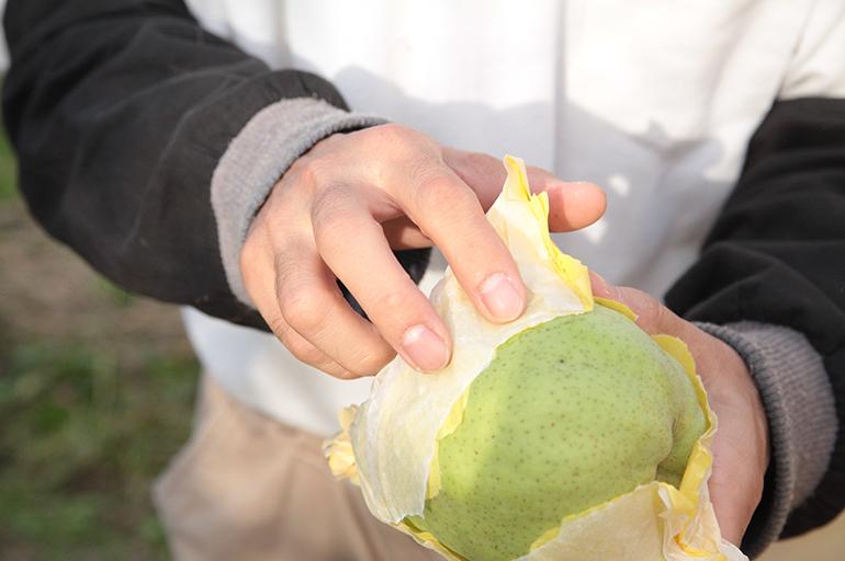 新潟県内でも一目置かれる品質の高さ