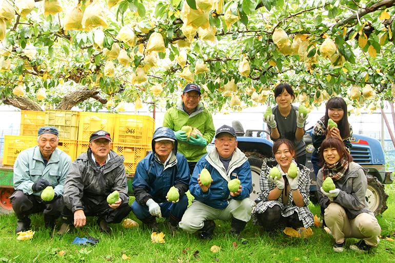 いち早くル・レクチェ栽培に取り組んできた和泉果樹園