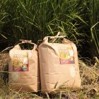 新米予約注文:28年度 新潟産 かおりのコシヒカリ(従来品種) – 自然の里・かくだ山