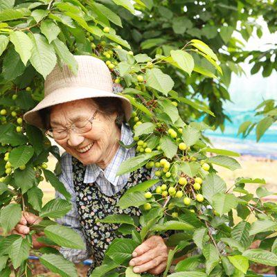農園の金田ヤイ子さん