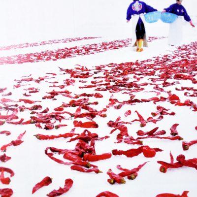 白銀の絨毯に広がる真っ赤な肉厚唐辛子((c) 『自然人 No.27』)