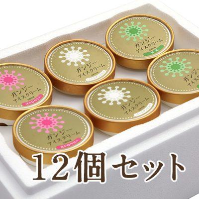ガンジーアイスクリーム 12個セット