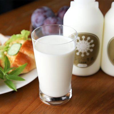 毎朝の食卓に、ガンジー牛乳を!