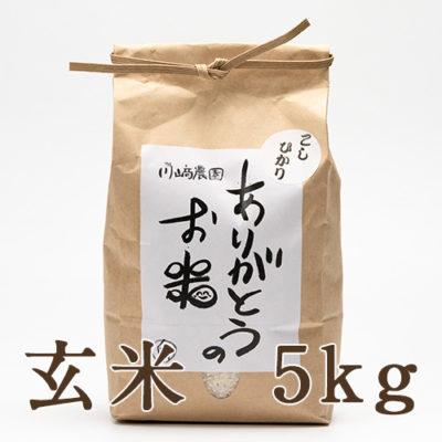 自然栽培米コシヒカリ 玄米5kg