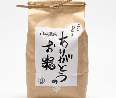 令和元年度米 自然栽培米コシヒカリ(従来品種)