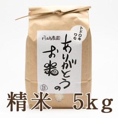自然栽培米トドロキワセ 精米5kg