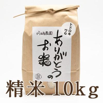 自然栽培米トドロキワセ 精米10kg
