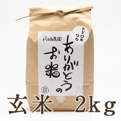 自然栽培米トドロキワセ 玄米2kg