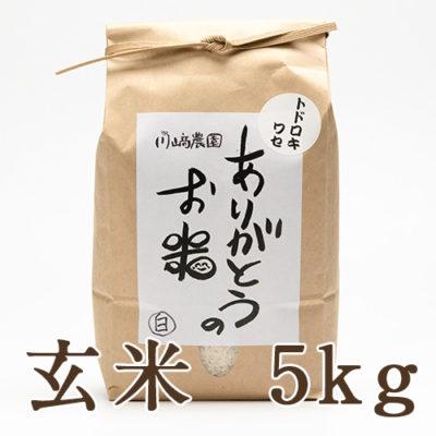 自然栽培米トドロキワセ 玄米5kg