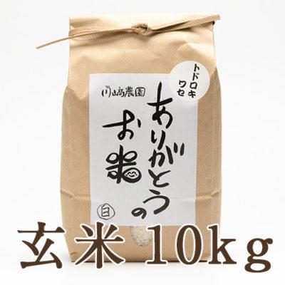 自然栽培米トドロキワセ 玄米10kg