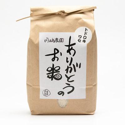 令和元年度米 自然栽培米トドロキワセ