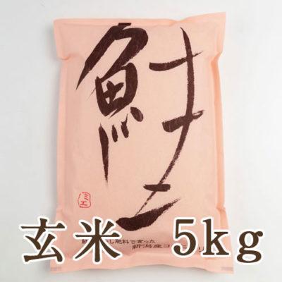 新潟産 コシヒカリ「鮭」玄米5kg
