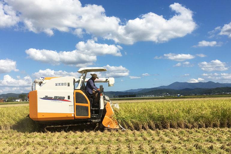「植酸」の力で土を浄化!稲本来の成長力を呼び戻す農法