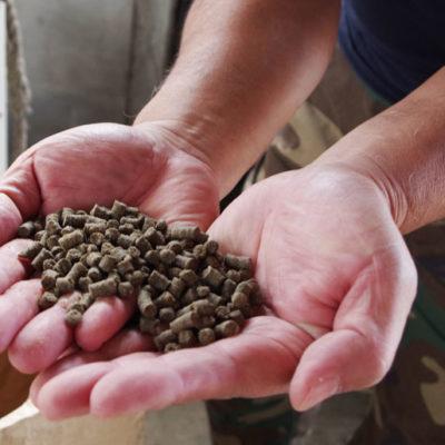 鮭のボカシ肥料