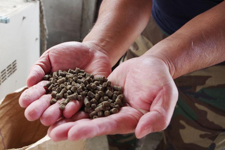 肥料から手作り「鮭のボカシ肥料」