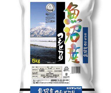 30年度米 魚沼産コシヒカリ