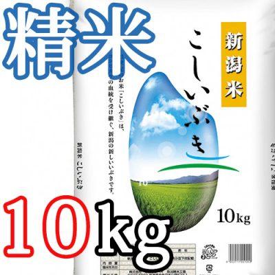 新潟県産こしいぶき 精米10kg