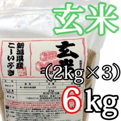 新潟県産こしいぶき 玄米6kg