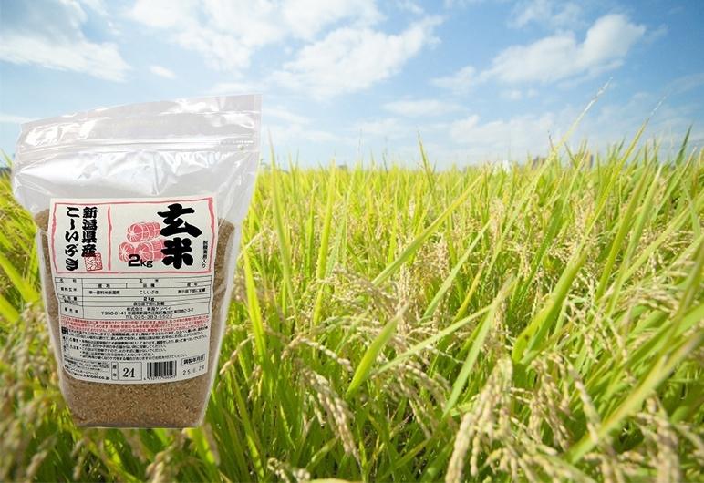 新潟県産米で玄米食始めてみませんか?