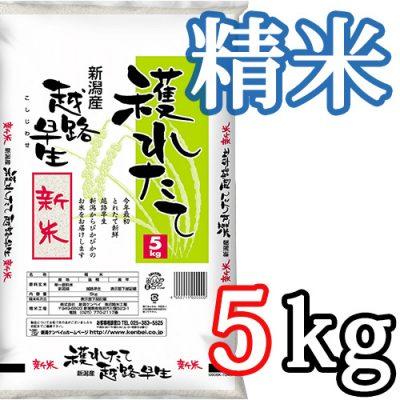 新潟県産越路早生 精米5kg
