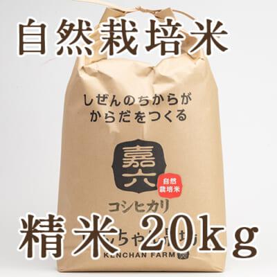 自然栽培米コシヒカリ 精米20kg