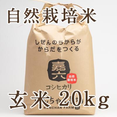 自然栽培米コシヒカリ 玄米20kg
