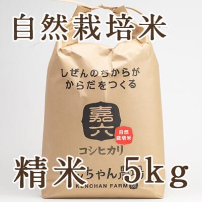 【定期購入】自然栽培米コシヒカリ 精米5kg