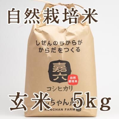 【定期購入】自然栽培米コシヒカリ 玄米5kg