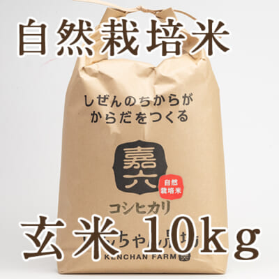【定期購入】自然栽培米コシヒカリ 玄米10kg