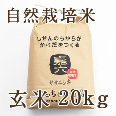 自然栽培米ササニシキ 玄米20kg