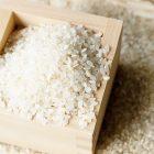 令和元年度米 自然栽培米ササニシキ