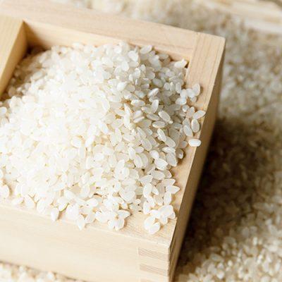 予約注文:令和元年度米 自然栽培米ササニシキ