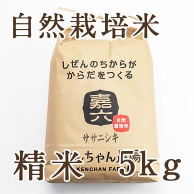 【定期購入】自然栽培米ササニシキ 精米5kg