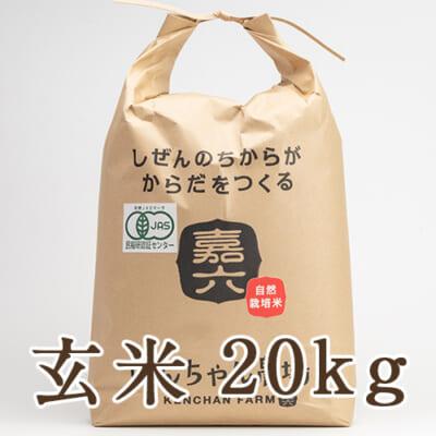 自然栽培米ササニシキ(JAS有機認証米) 玄米20kg