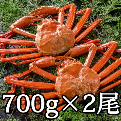 紅ズワイガニ 700g×2尾